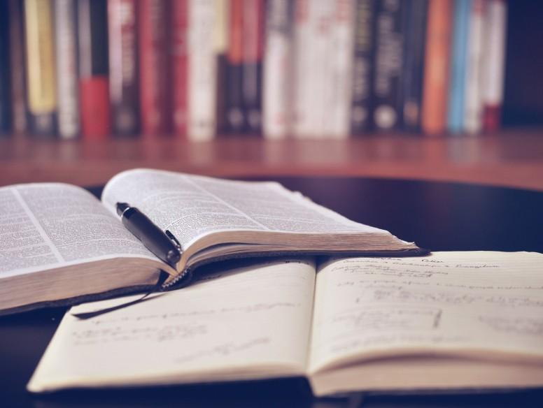 chiara blogg studera forska